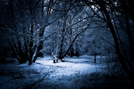 winter b